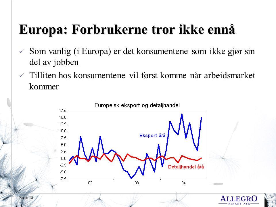Side 20 Europa: Forbrukerne tror ikke ennå  Som vanlig (i Europa) er det konsumentene som ikke gjør sin del av jobben  Tilliten hos konsumentene vil først komme når arbeidsmarket kommer