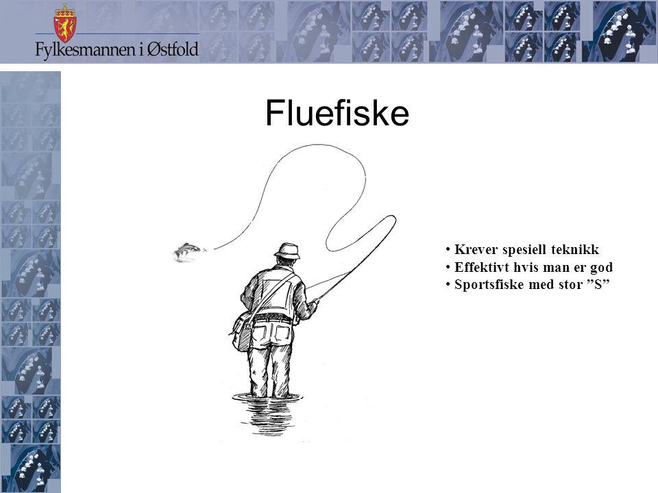 Fluefiske • Krever spesiell teknikk • Effektivt hvis man er god • Sportsfiske med stor S