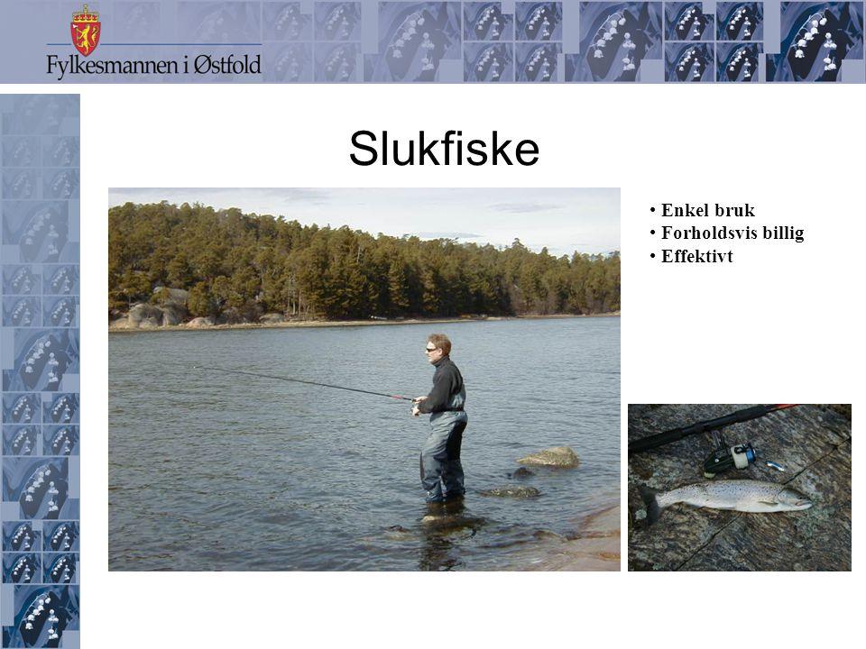 Slukfiske • Enkel bruk • Forholdsvis billig • Effektivt