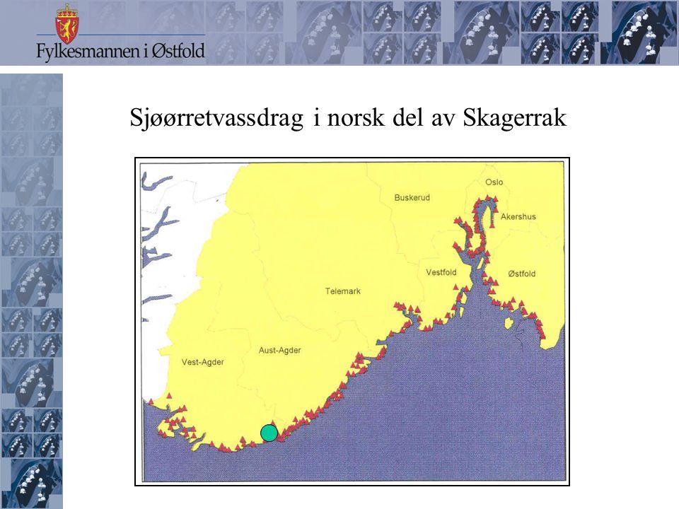 Sjøørretvassdrag i svensk del av Skagerrak