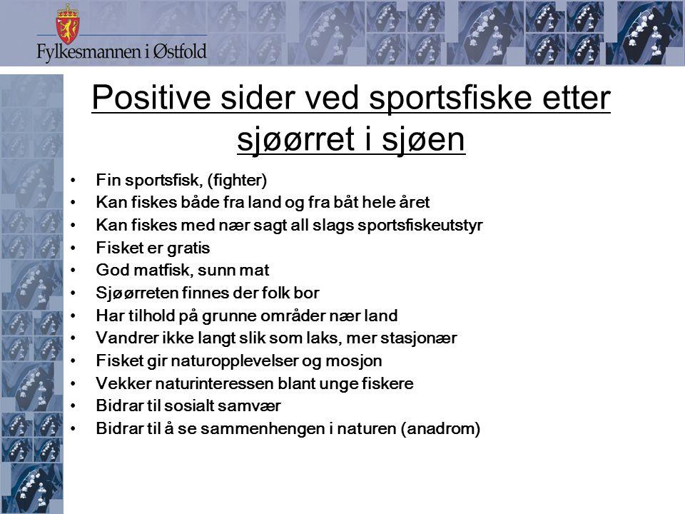 Mulighetene for fiske etter sjøørret i Skagerrak-regionen .
