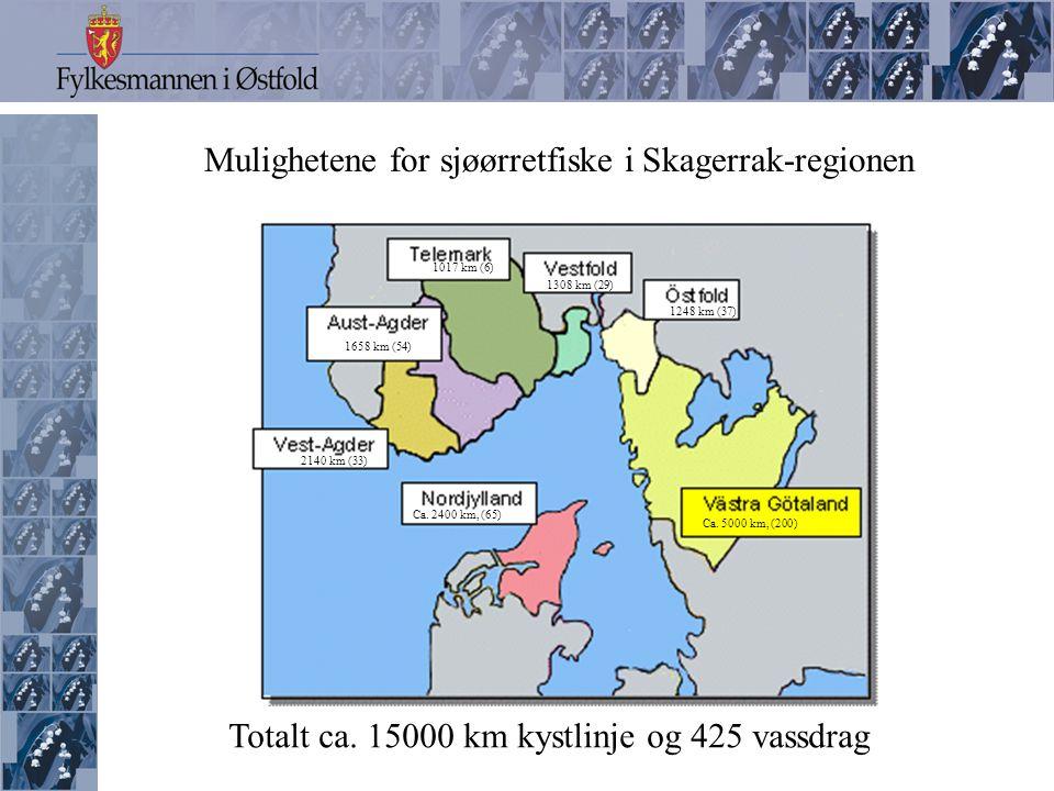 Ulike former for sjøørretfiske i sjøen Fluefiske Slukfiske Dorgefiske Meitefiske