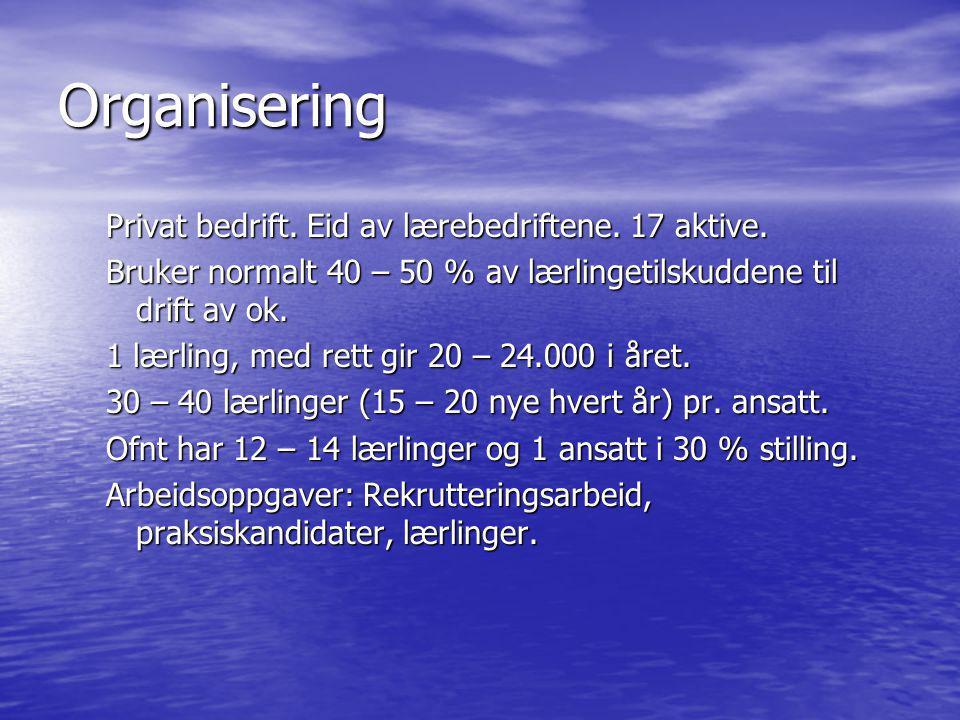 Erfaringer • Fiskeindustri.Mer spesialiserte bedrifter.