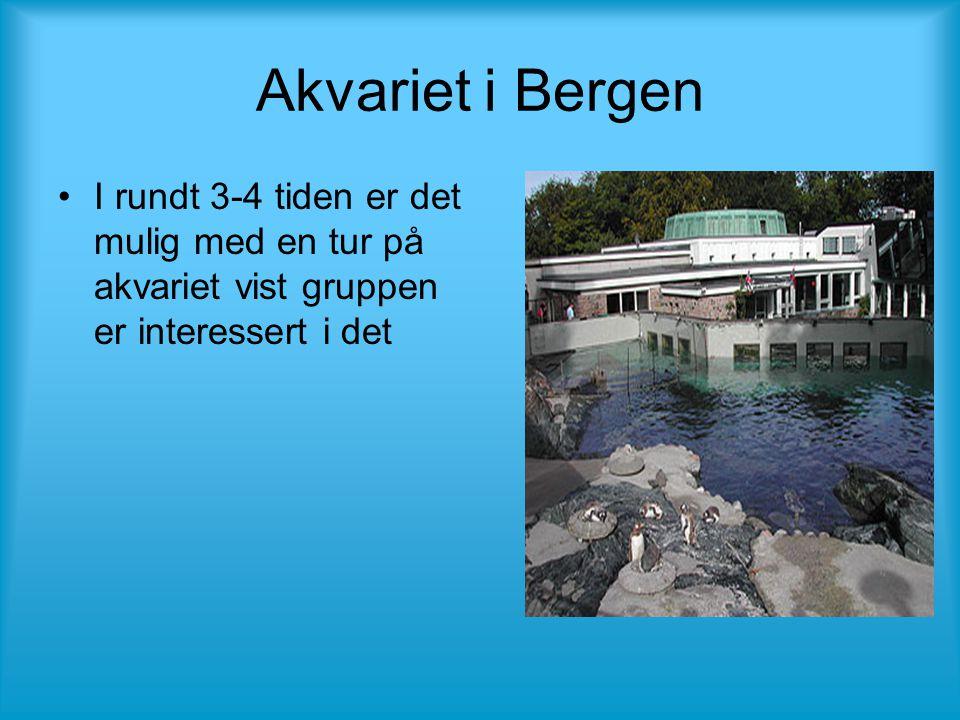 Akvariet i Bergen •I rundt 3-4 tiden er det mulig med en tur på akvariet vist gruppen er interessert i det