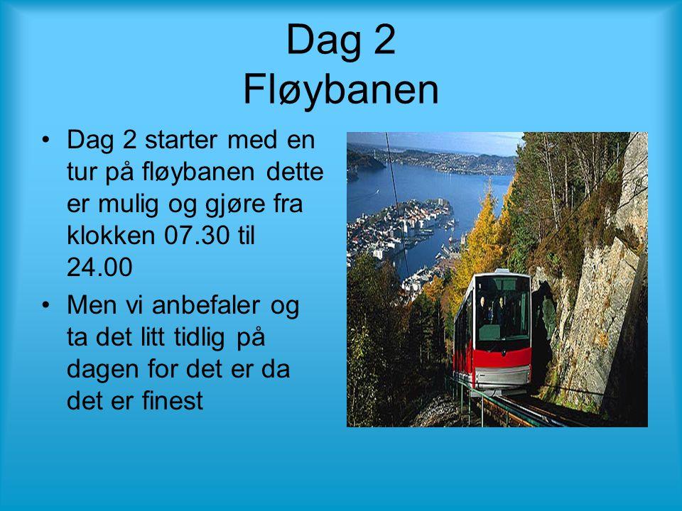 Dag 2 Fløybanen •Dag 2 starter med en tur på fløybanen dette er mulig og gjøre fra klokken 07.30 til 24.00 •Men vi anbefaler og ta det litt tidlig på dagen for det er da det er finest