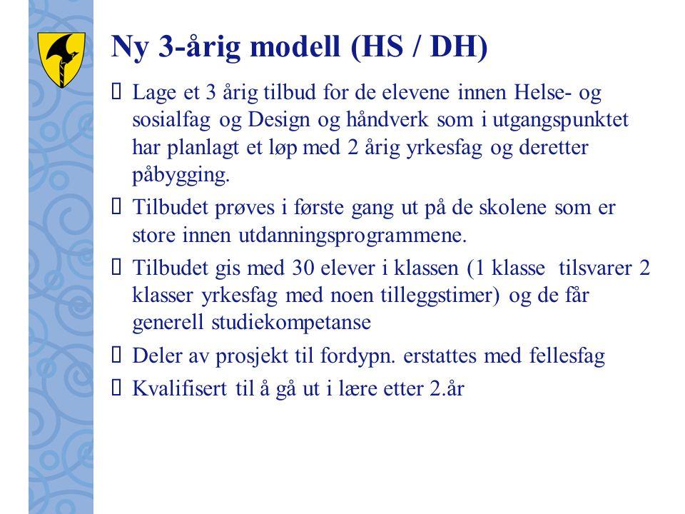 Ny 3-årig modell (HS / DH)  Lage et 3 årig tilbud for de elevene innen Helse- og sosialfag og Design og håndverk som i utgangspunktet har planlagt et