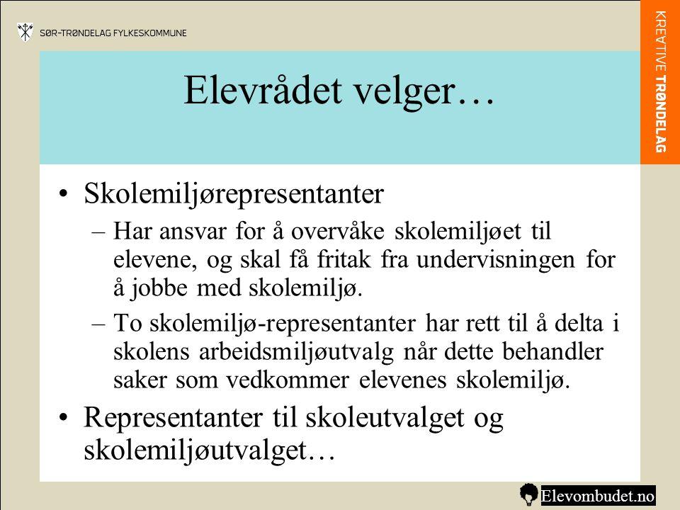 •Forslag til vedtekter (regler for elevrådet).
