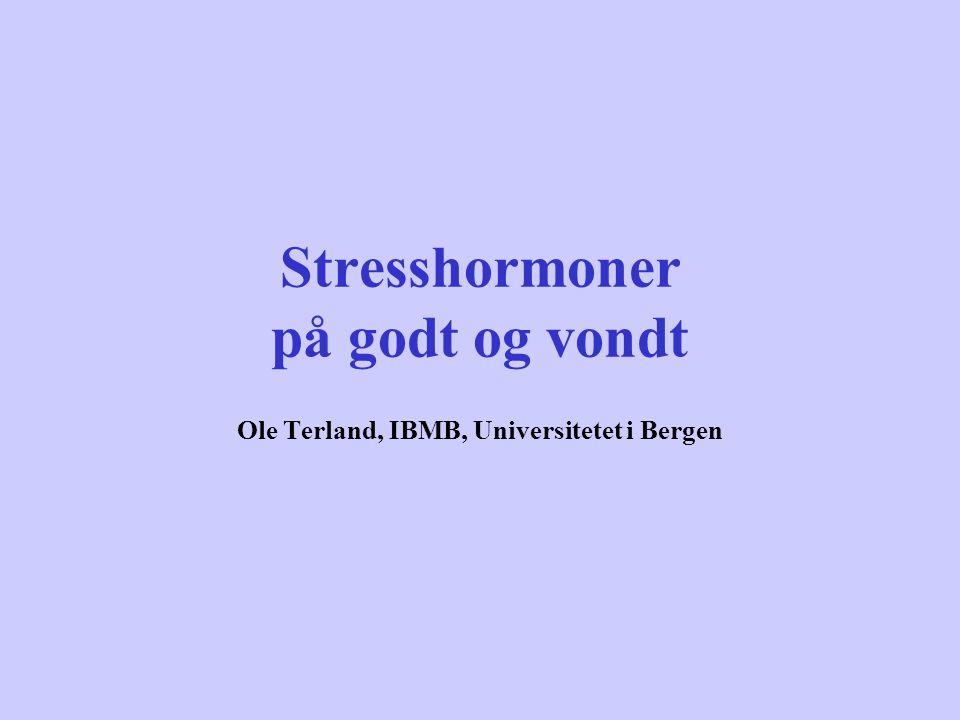 Stresshormoner på godt og vondt Ole Terland, IBMB, Universitetet i Bergen