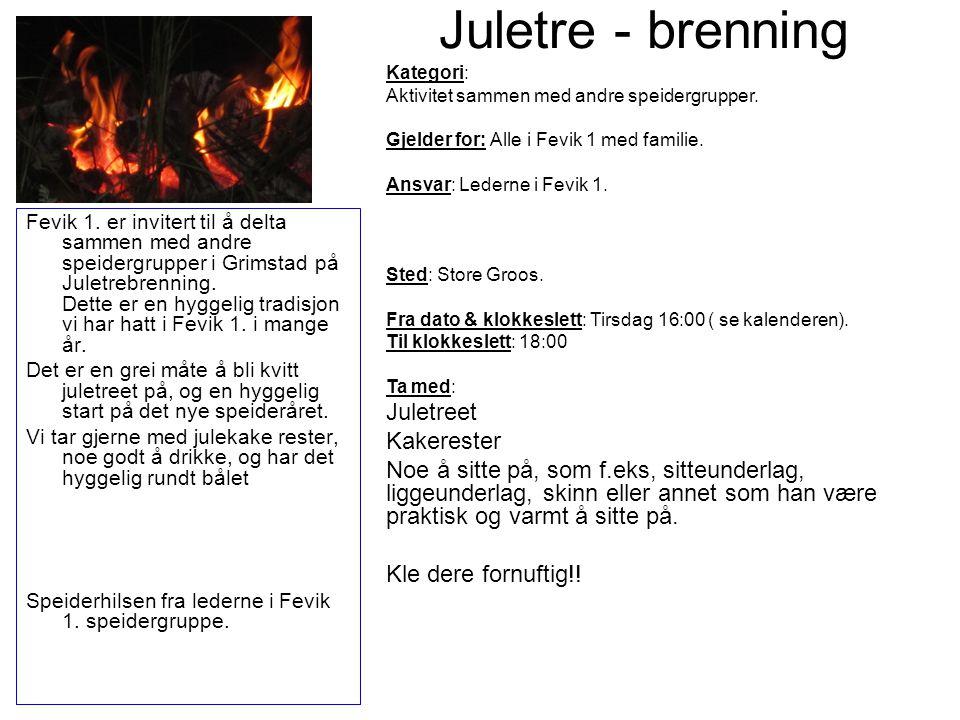 Juletre - brenning Fevik 1. er invitert til å delta sammen med andre speidergrupper i Grimstad på Juletrebrenning. Dette er en hyggelig tradisjon vi h