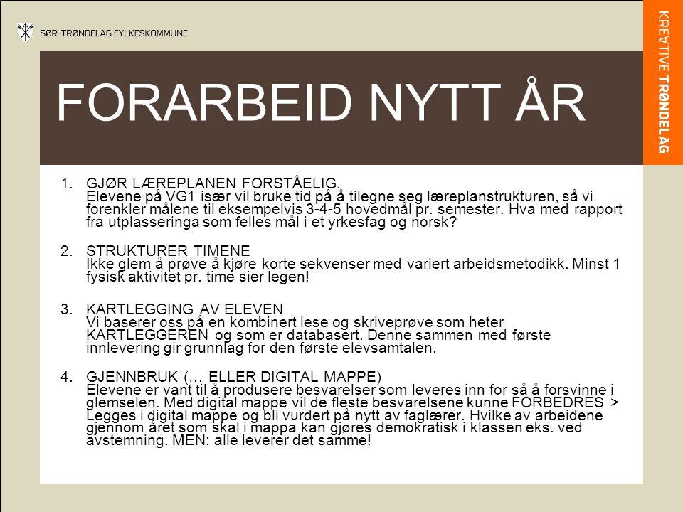 FORARBEID NYTT ÅR 1.GJØR LÆREPLANEN FORSTÅELIG.