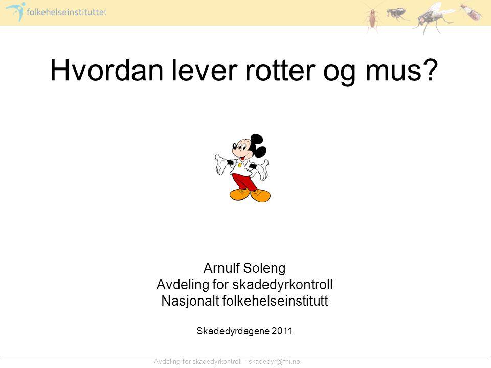Avdeling for skadedyrkontroll – skadedyr@fhi.no Hvordan lever rotter og mus? Arnulf Soleng Avdeling for skadedyrkontroll Nasjonalt folkehelseinstitutt