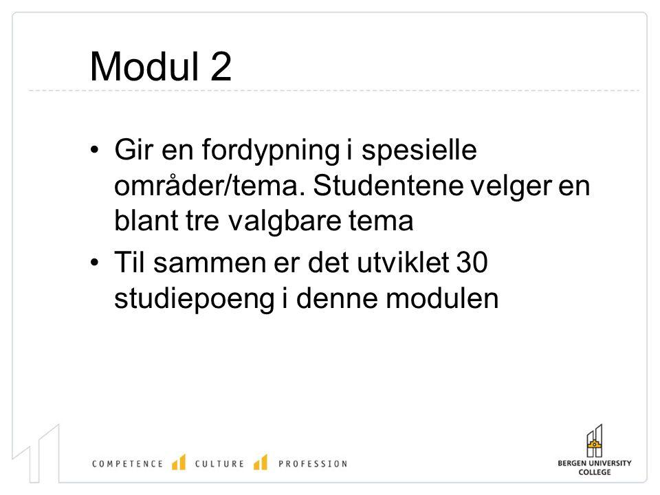 Modul 2 •Gir en fordypning i spesielle områder/tema.