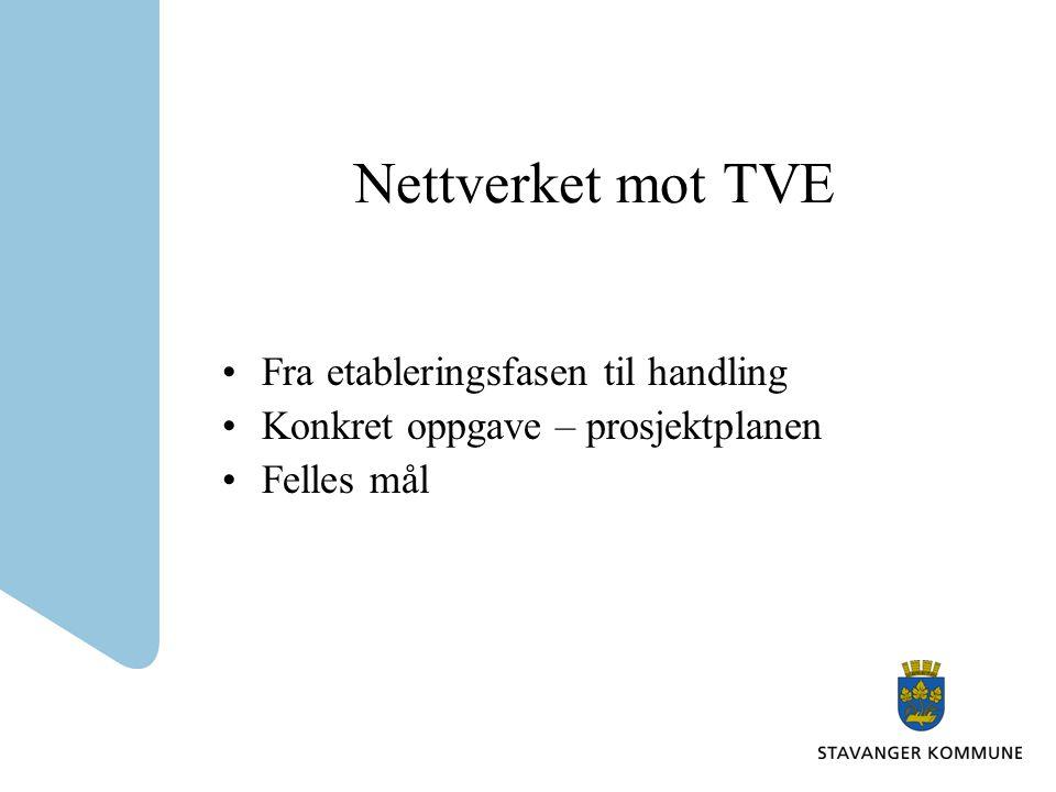 Nettverket mot TVE •Fra etableringsfasen til handling •Konkret oppgave – prosjektplanen •Felles mål