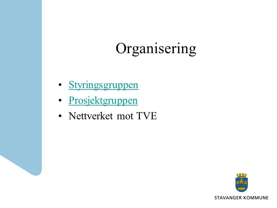 Organisering •StyringsgruppenStyringsgruppen •ProsjektgruppenProsjektgruppen •Nettverket mot TVE