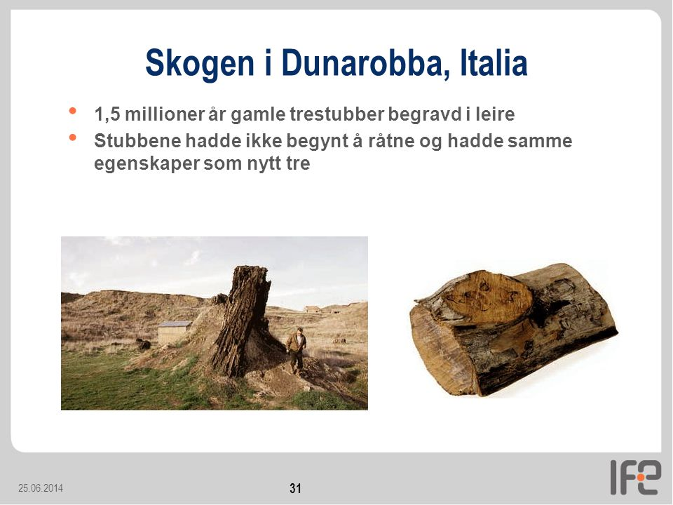 25.06.2014 31 Skogen i Dunarobba, Italia • 1,5 millioner år gamle trestubber begravd i leire • Stubbene hadde ikke begynt å råtne og hadde samme egenskaper som nytt tre