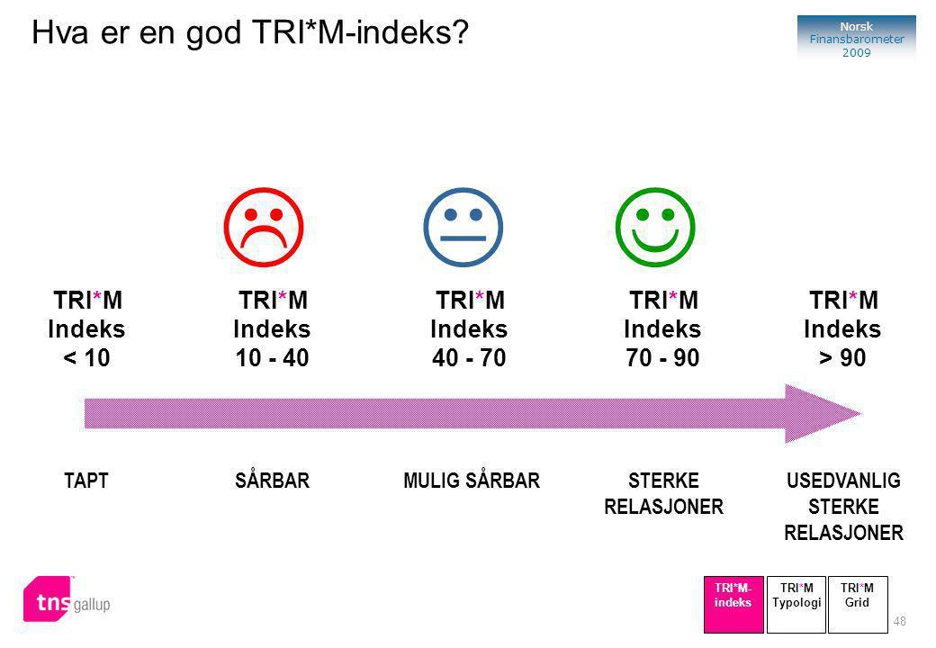 48 Norsk Finansbarometer 2009 SÅRBAR TRI*M Indeks 10 - 40 TAPT TRI*M Indeks < 10 STERKE RELASJONER TRI*M Indeks 70 - 90 USEDVANLIG STERKE RELASJONER TRI*M Indeks > 90 MULIG SÅRBAR TRI*M Indeks 40 - 70  TRI*M Typologi TRI*M- indeks TRI*M Grid Hva er en god TRI*M-indeks?