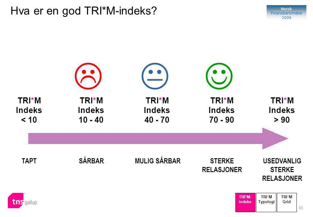 85 Norsk Finansbarometer 2009 SÅRBAR TRI*M Indeks 10 - 40 TAPT TRI*M Indeks < 10 STERKE RELASJONER TRI*M Indeks 70 - 90 USEDVANLIG STERKE RELASJONER TRI*M Indeks > 90 MULIG SÅRBAR TRI*M Indeks 40 - 70  TRI*M Typologi TRI*M- indeks TRI*M Grid Hva er en god TRI*M-indeks?