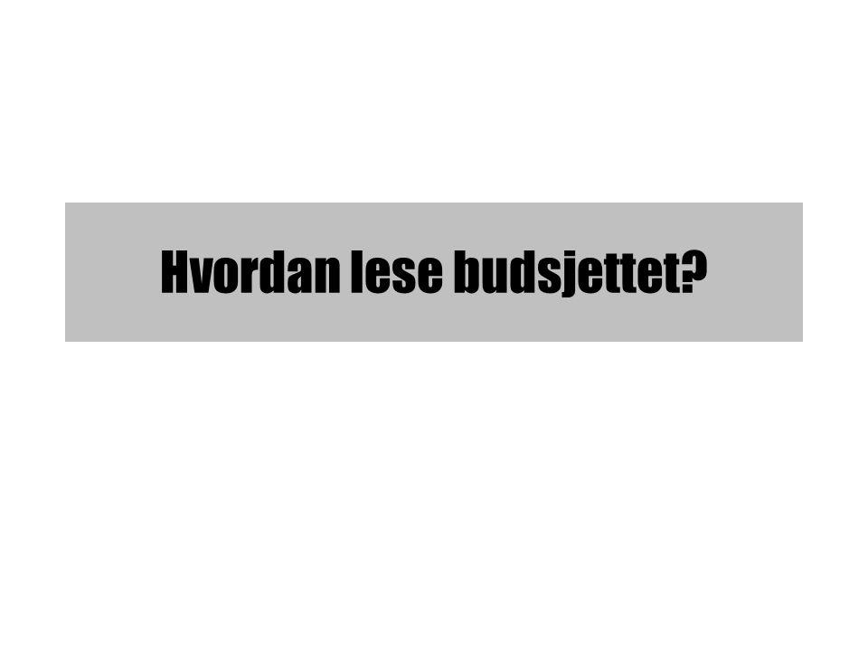 Hvordan lese budsjettet?