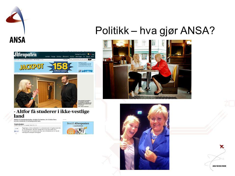 Politikk – hva gjør ANSA?