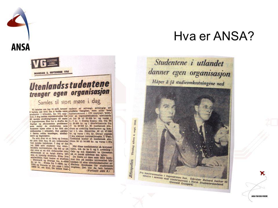 Hva er ANSA?