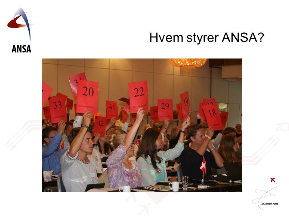 Hvem styrer ANSA?