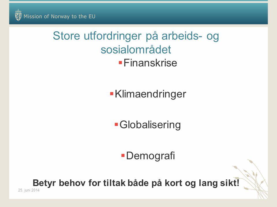 25. juni 2014 Store utfordringer på arbeids- og sosialområdet  Finanskrise  Klimaendringer  Globalisering  Demografi Betyr behov for tiltak både p