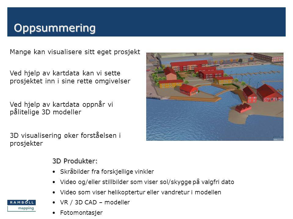 Side Oppsummering Mange kan visualisere sitt eget prosjekt 3D Produkter: • Skråbilder fra forskjellige vinkler • Video og/eller stillbilder som viser