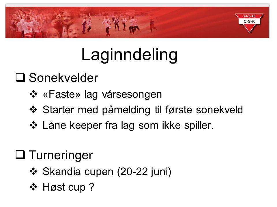 Laginndeling  Sonekvelder  «Faste» lag vårsesongen  Starter med påmelding til første sonekveld  Låne keeper fra lag som ikke spiller.  Turneringe