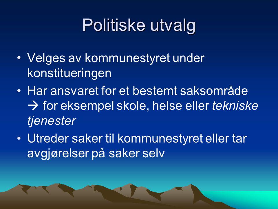 Politiske utvalg •Velges av kommunestyret under konstitueringen •Har ansvaret for et bestemt saksområde  for eksempel skole, helse eller tekniske tje