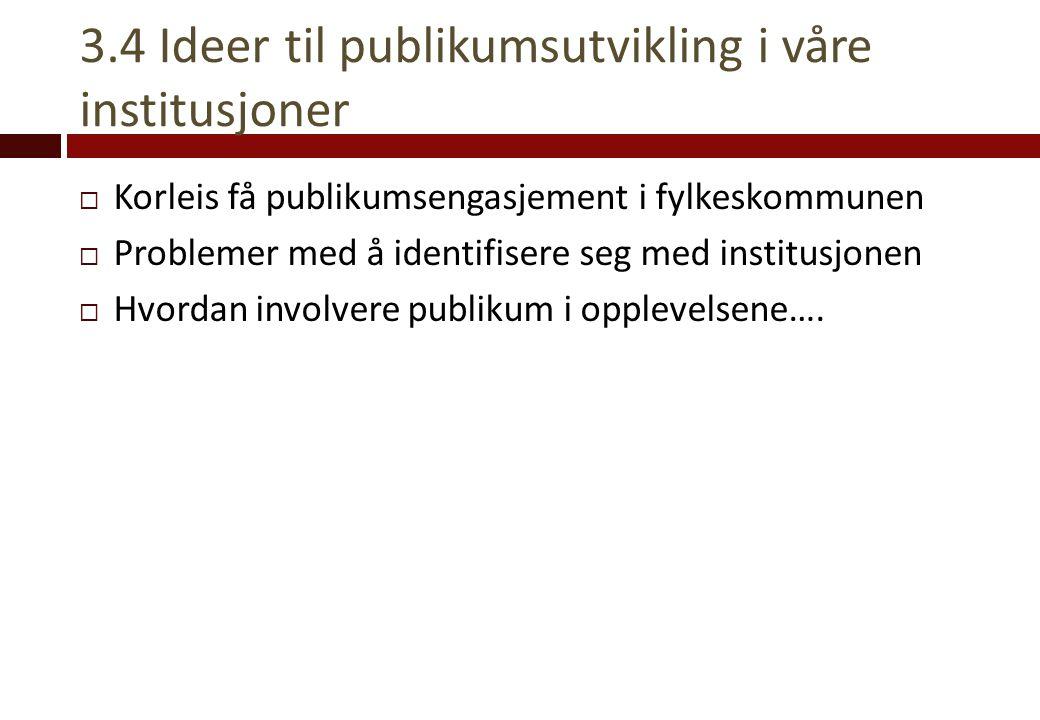 3.4 Ideer til publikumsutvikling i våre institusjoner  Korleis få publikumsengasjement i fylkeskommunen  Problemer med å identifisere seg med instit