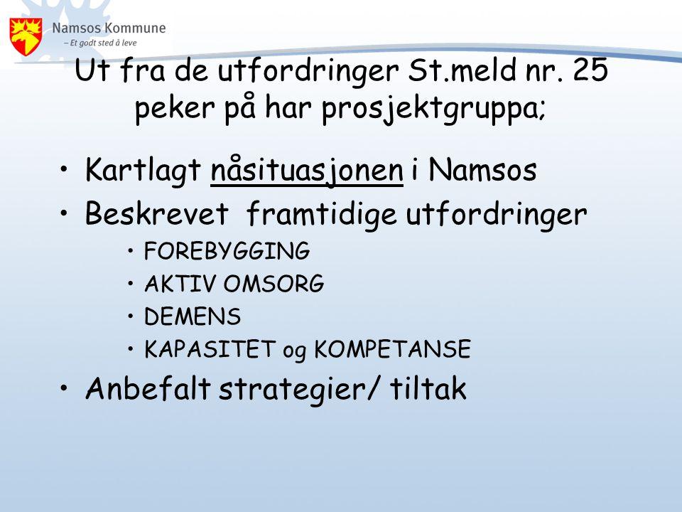 Ut fra de utfordringer St.meld nr. 25 peker på har prosjektgruppa; •Kartlagt nåsituasjonen i Namsos •Beskrevet framtidige utfordringer •FOREBYGGING •A