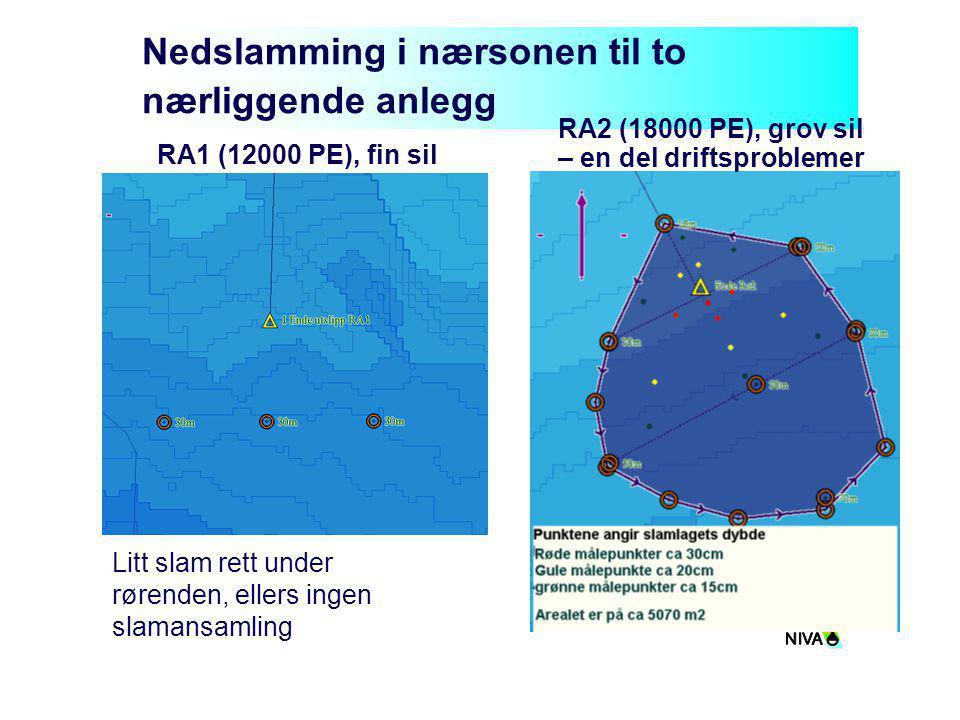 Nedslamming i nærsonen til to nærliggende anlegg Litt slam rett under rørenden, ellers ingen slamansamling RA1 (12000 PE), fin sil RA2 (18000 PE), gro
