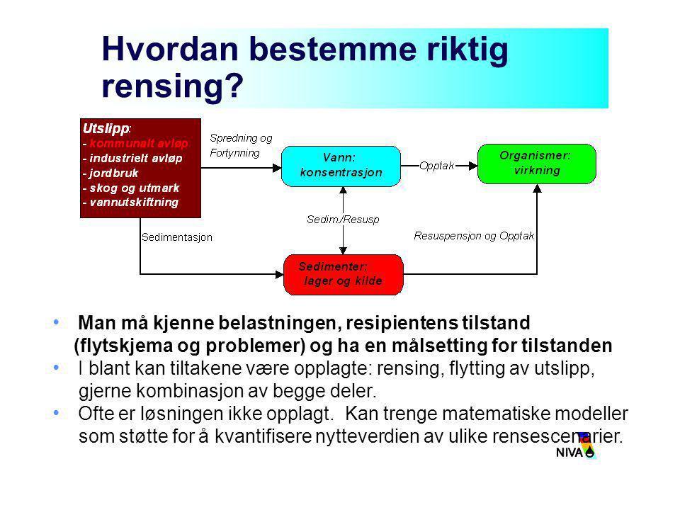 Hvordan bestemme riktig rensing? • Man må kjenne belastningen, resipientens tilstand (flytskjema og problemer) og ha en målsetting for tilstanden • I