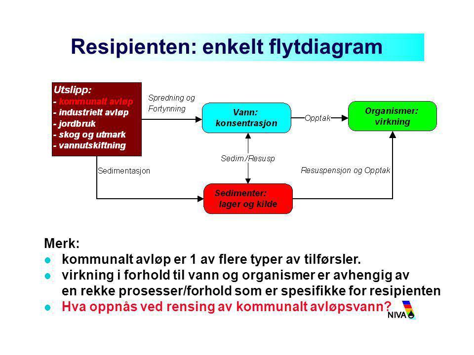 Resipienten: enkelt flytdiagram Merk:  kommunalt avløp er 1 av flere typer av tilførsler.  virkning i forhold til vann og organismer er avhengig av