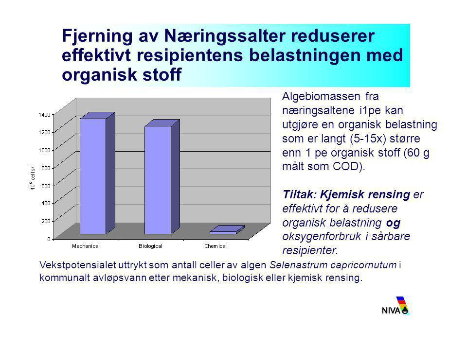 Fjerning av Næringssalter reduserer effektivt resipientens belastningen med organisk stoff Algebiomassen fra næringsaltene i1pe kan utgjøre en organis