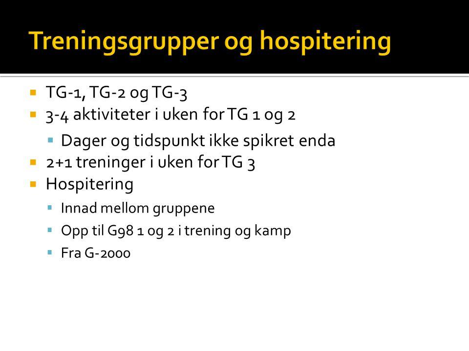  TG-1, TG-2 og TG-3  3-4 aktiviteter i uken for TG 1 og 2  Dager og tidspunkt ikke spikret enda  2+1 treninger i uken for TG 3  Hospitering  Inn