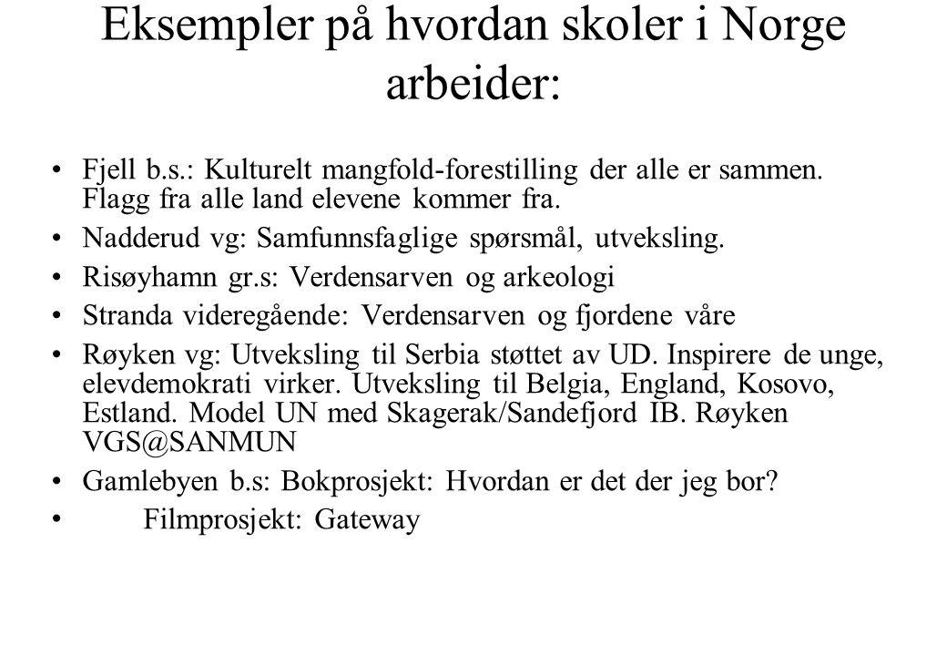 Eksempler på hvordan skoler i Norge arbeider: •Fjell b.s.: Kulturelt mangfold-forestilling der alle er sammen. Flagg fra alle land elevene kommer fra.