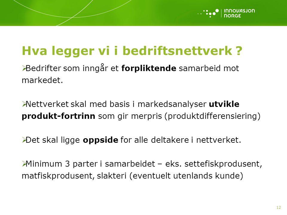 12 Hva legger vi i bedriftsnettverk ?  Bedrifter som inngår et forpliktende samarbeid mot markedet.  Nettverket skal med basis i markedsanalyser utv
