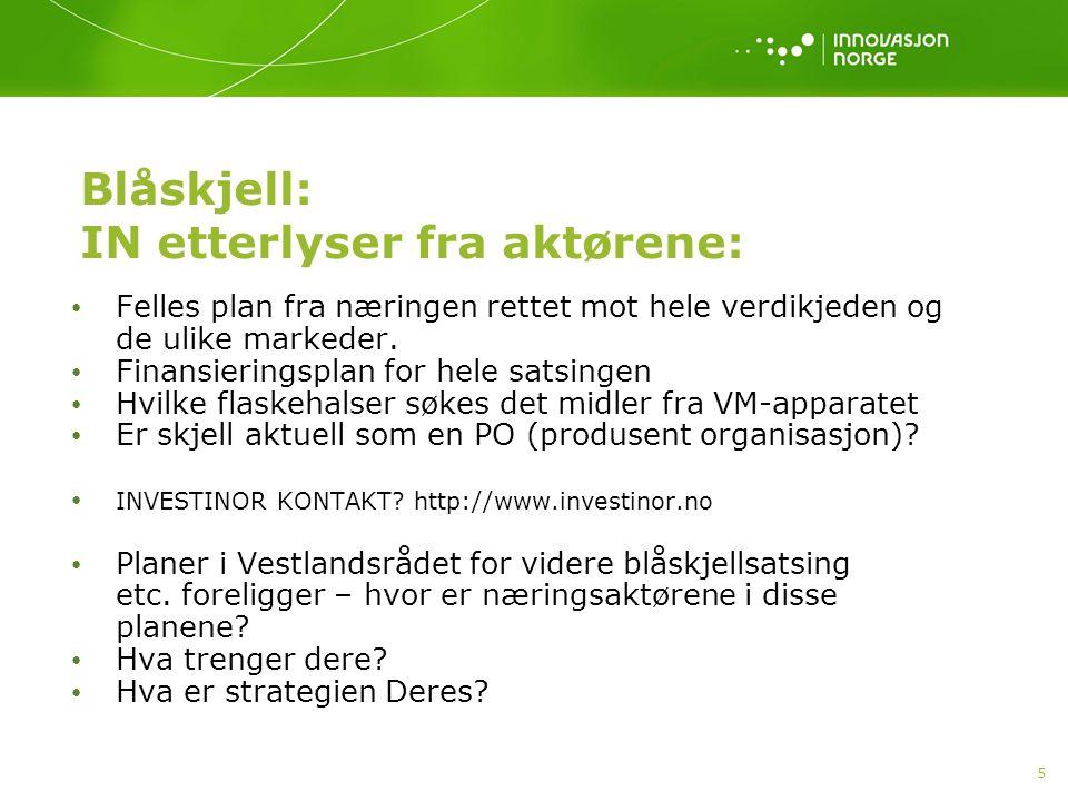 6 Østers (flatøsters) • Norsk marked.Stort europeisk marked.