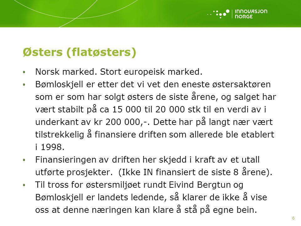 6 Østers (flatøsters) • Norsk marked. Stort europeisk marked. • Bømloskjell er etter det vi vet den eneste østersaktøren som er som har solgt østers d