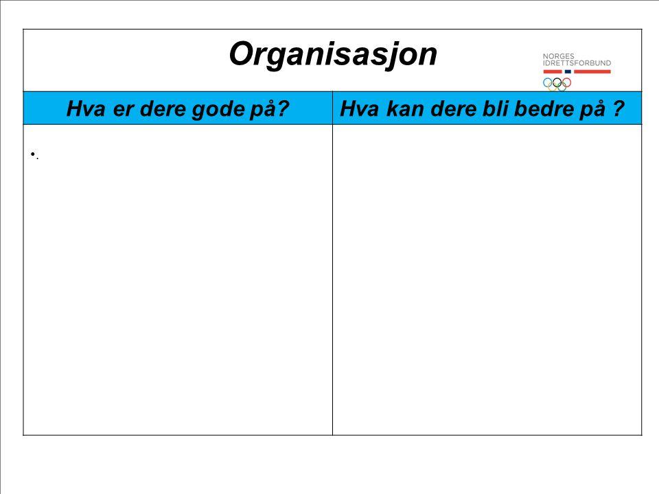 Organisasjon Hva er dere gode på?Hva kan dere bli bedre på ? •.•.