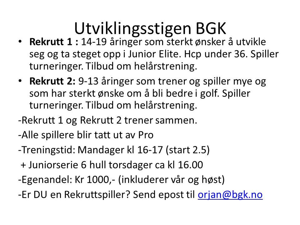 Utviklingsstigen BGK • Bredde 1: Juniorer i alderen 14-19 år som spiller golf på gøy, uten turneringsambisjoner.