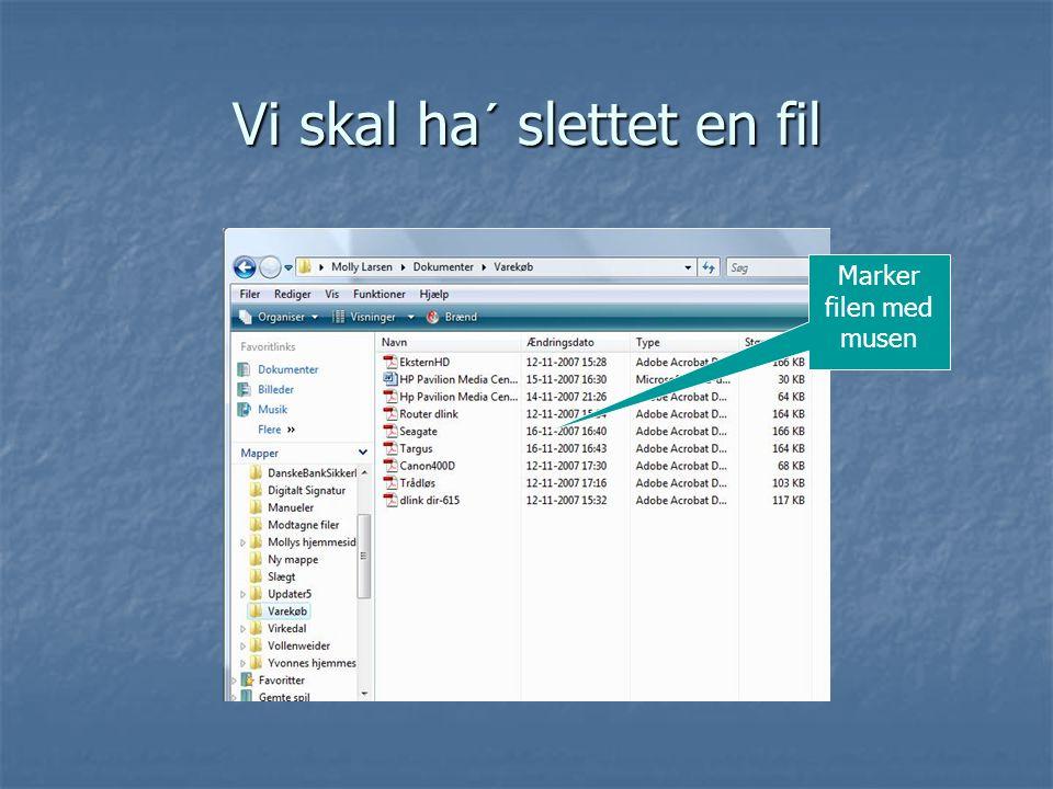Vi skal ha´ slettet en fil Marker filen med musen