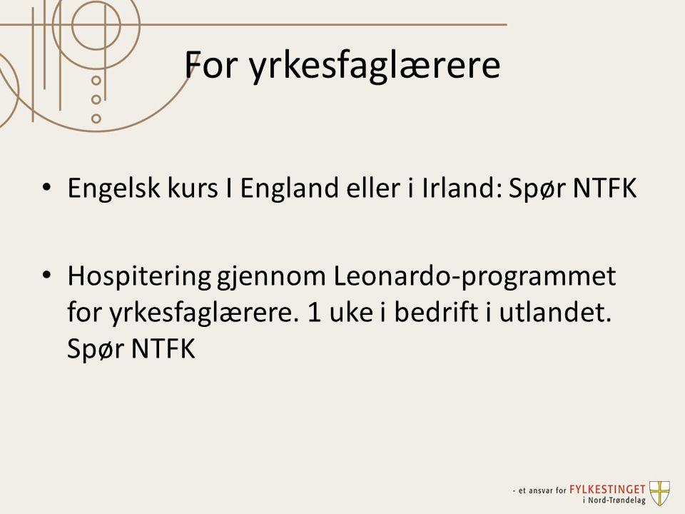 For yrkesfaglærere • Engelsk kurs I England eller i Irland: Spør NTFK • Hospitering gjennom Leonardo-programmet for yrkesfaglærere.