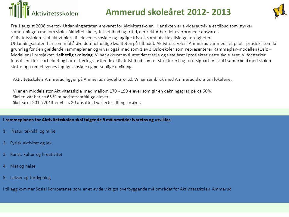 Aktivitetsskolen Ammerud ligger på Ammerud i bydel Grorud. Vi har sambruk med Ammerud skole om lokalene. Vi er en middels stor Aktivitetsskole med mel