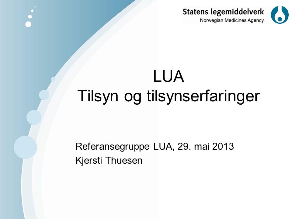 LUA Tilsyn og tilsynserfaringer Referansegruppe LUA, 29. mai 2013 Kjersti Thuesen