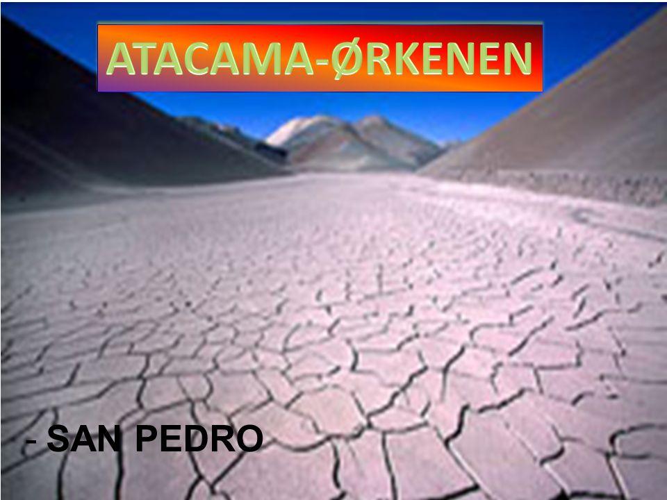 -SAN PEDRO
