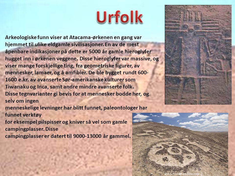 Arkeologiske funn viser at Atacama-ørkenen en gang var hjemmet til ulike eldgamle sivilisasjoner. En av de mest åpenbare indikasjoner på dette er 5000