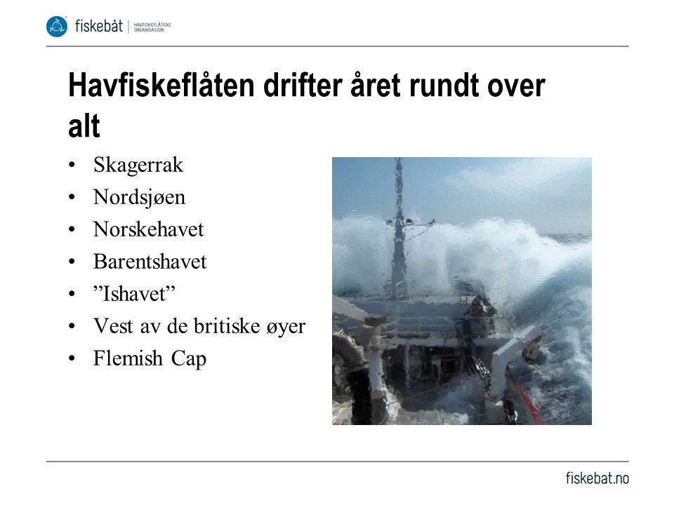 Havfiskeflåten drifter året rundt over alt •Skagerrak •Nordsjøen •Norskehavet •Barentshavet • Ishavet •Vest av de britiske øyer •Flemish Cap
