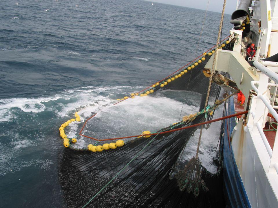 Fiskerne ønsker først å fremst å fiske